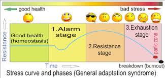 GAS stress model